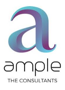 AMPLE THE CONSULTANT
